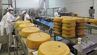 Amazing Cake Automated Processing Machines in Factory - Ice Cream Cake, Cheese Cake & Chocolate Cake