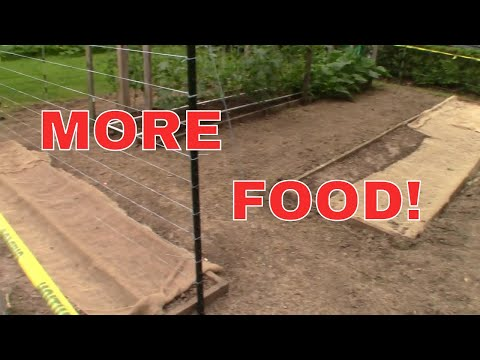 Mittleider Gardening: The Expanded and Improved Garden!