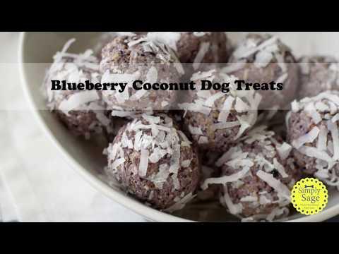 DIY Blueberry Coconut No Bake Dog Treats