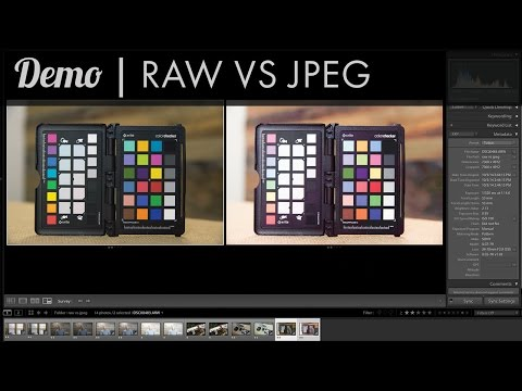 Demo - Raw vs Jpeg - Which should you use?