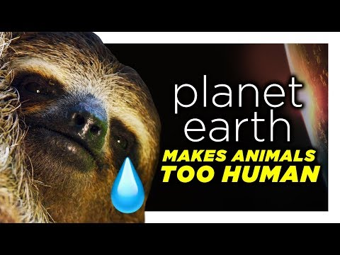 Planet Earth Is Reading Too Far Into These Animals