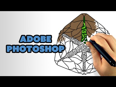 How To Color Line Art with Photoshop CC - #Photoshop 📸
