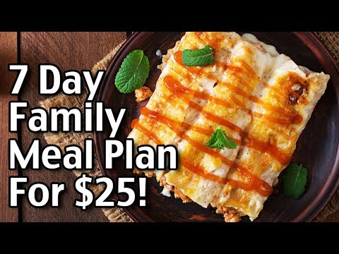 7 Day Meal Plan for $25 - Easy Beef Enchiladas Recipe