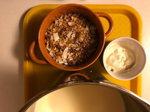 Hot Homemade Granola Cereal and Yogurt