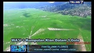 On The Spot - Fakta Unik Flores