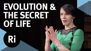 Copy number variation and the secret of life - with Aoife McLysaght