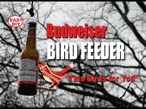 Easy DIY Budweiser Bird Feeder