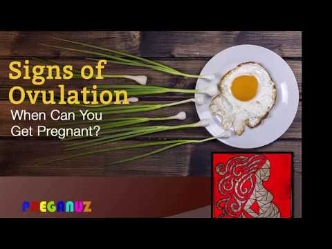 7 SIGNS OF OVULATION.