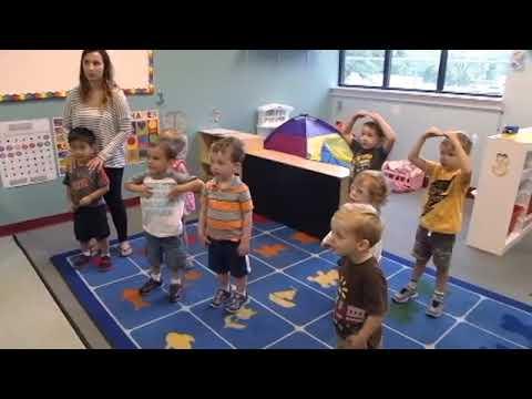 Preschoolers - Cognitive