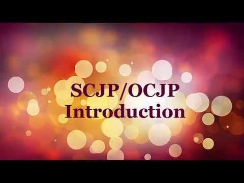 SCJP/OCJP Introduction 1.1 / Java tutorial 1.1