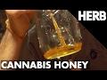 How To Make Cannabis Honey | Chef Blaine Alexandr Recipes