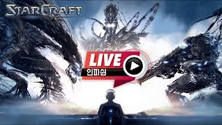 【 인피쉰 생방송 Live 】 스타 빨무 스타크래프트 빠른무한 팀플 Starcraft (2020-07-10 금요일)