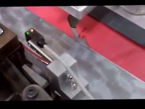 Dual-Line Inline Assembly Machine (Red Line)