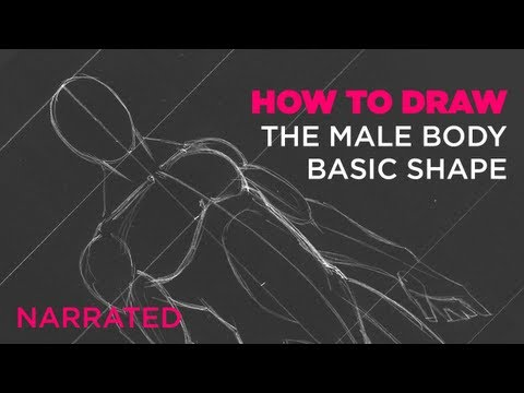 How To Draw The Male Body Basic Shape Narrated