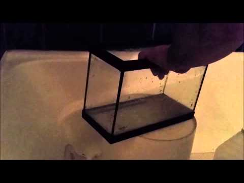 Cleaning a Glass Aquarium of Calcium Deposits the Fish Fin-atic Way
