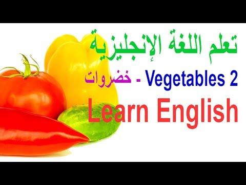 English speaking practice through Arabic lesson 16 ممارسة التحدث باللغة الإنجليزية