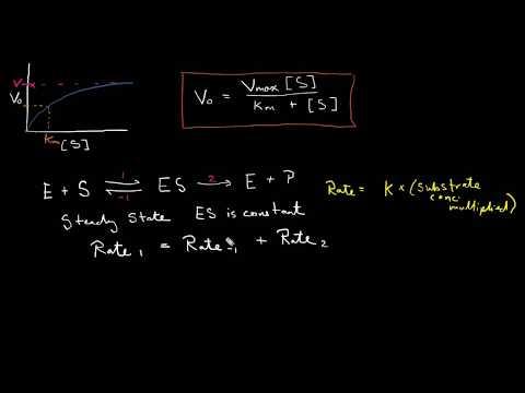 Derivation & interpretation of Michaelis-Menten Equation - Biochemistry