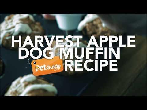 Harvest Apple Dog Muffin Recipe- Bone-AH-PetTreat!