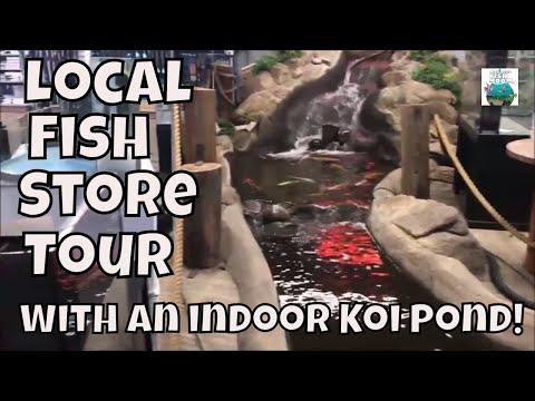 Fish Store Tour The Ocean Floor in Phoenix, AZ