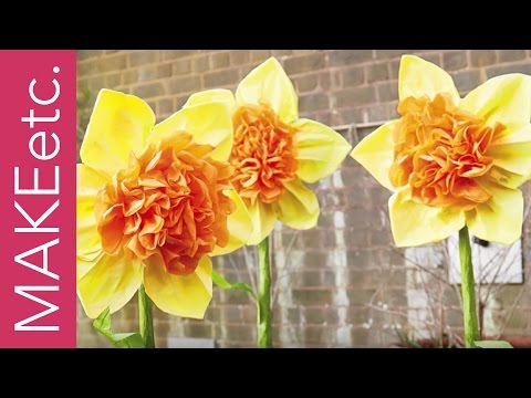 How to make a Tissue Paper Daffodil with Juliet Carr