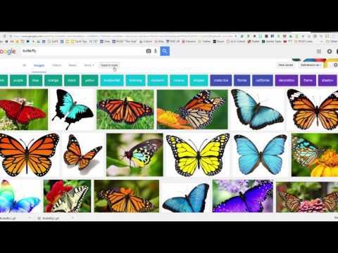 Images & Transparency - Hacking Google Slides