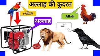 Water Pump Allah Allah Zikr Karta hai | Miracle of Allah