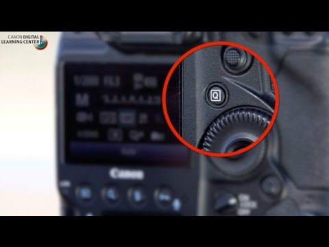 Canon: Bird Photography with Arthur Morris: Camera settings