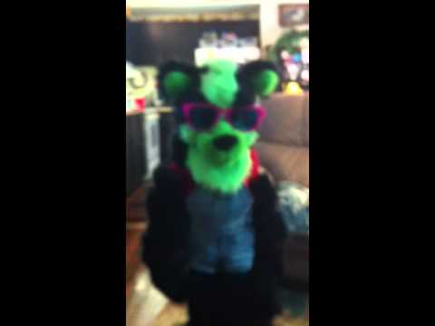 My little cousin put on my Furry costume