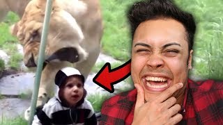 REACTING TO KIDS GETTING ATTACKED AT THE ZOO (WHY IS THIS FUNNY)