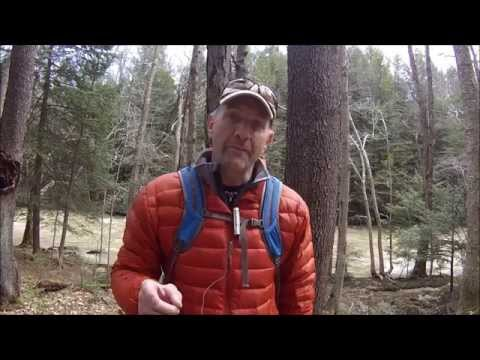 Sawyer Water Filter & MSR Miniworks Review