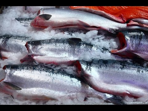 How To Grill A Whole Salmon | Global Seafoods