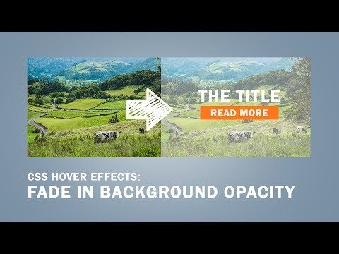 CSS Hover Effects | Fade In Background Opacity(transparent)