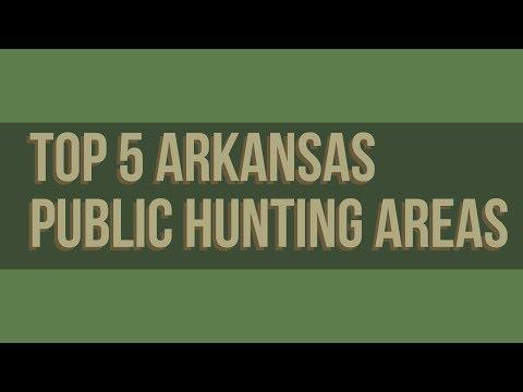 Top 5 Arkansas Public Hunting Areas