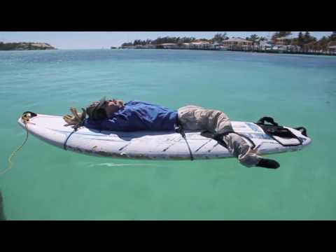 SHARK Repellent Technology SharkBanz ( electromagnetic Shark Repellant )