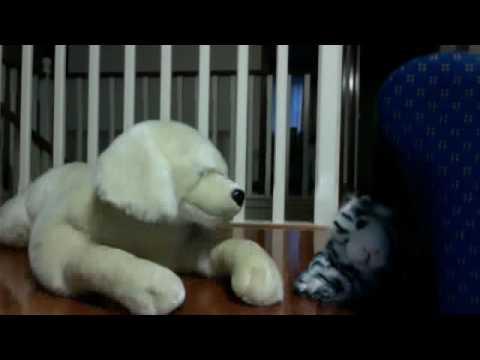 Soft toy wrestling dog vs cat !!