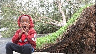 My First Hurricane ( Hurricane Irma )