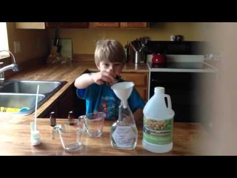 DIY Stain Remover with doTERRA essential oils