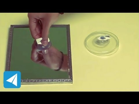 Suction cup holds onto to surfaces | Atmospheric Pressure | Physics