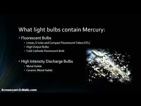 Recycling Fluorescent Bulbs/Mercury Spills Clean-Up Procedures