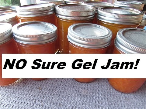 Canning Fruit With NO SURE GEL~ Apricot Jam