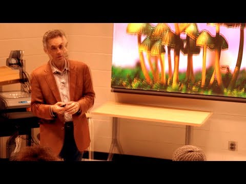 How Psychedelics are Still a Mystery - Prof. Jordan Peterson
