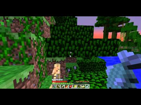 How to find and tame cats in minecraft