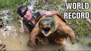 Download WORLD RECORD ALLIGATOR SNAPPING TURTLE! NOODLING! 300+lbs! Video