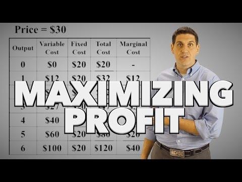 Maximizing Profit Practice- Micro 3.9