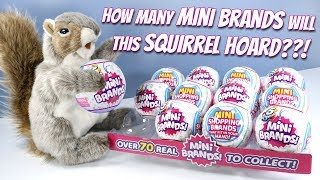 5 Surprise Mini Brands! Toys Real Products Unboxing Zuru