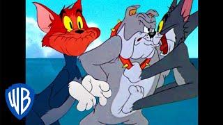 Download Tom y Jerry en Latino | Los gritos de Tom | WB Kids Video