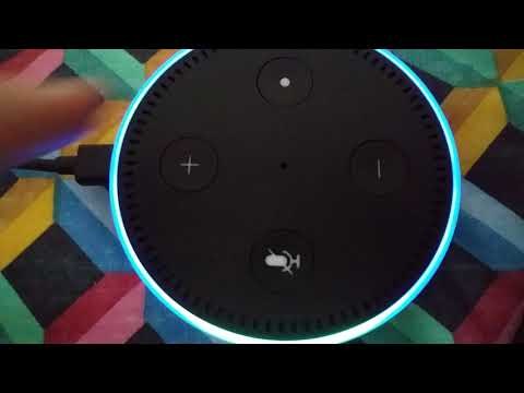 Amazon Alexa Grandfather Clock Striking 3