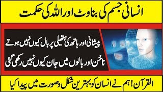 How Human Body Works | Urdu Information About Body