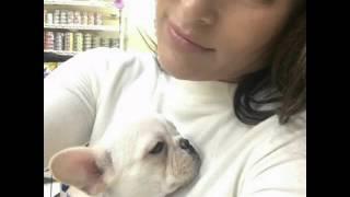 Baby wiston - Nikki Bella