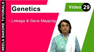 Genetics - Linkage & Gene Mapping